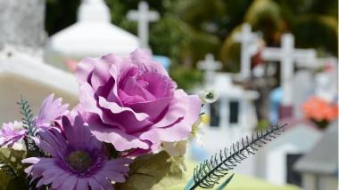La démarche RSE au cœur du marché funéraire